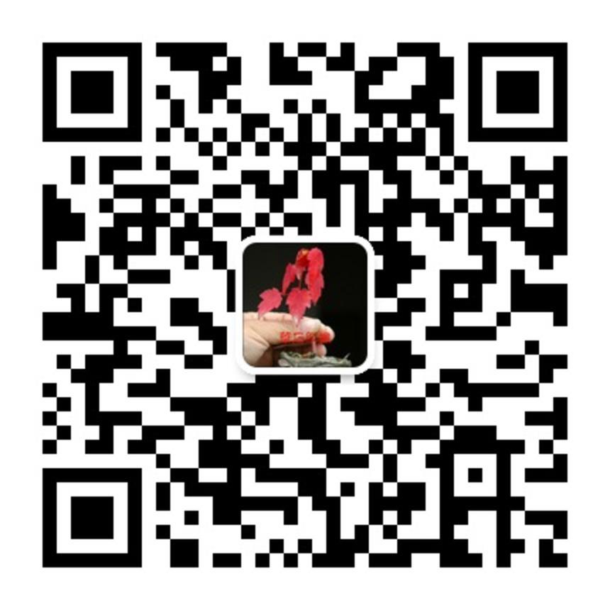 华石红枫微信号:huashihongfeng